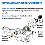 AUTEX HVAC Blower Motor Assembly 700105 Replacement for Ford Focus 2007-2000/Compatible with Ford Transit Connect 2013-2010 Blower Motor