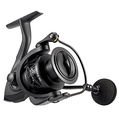 Cheap Piscifun Carbon X Spinning Reel – Light to 7.8oz, 6.2:1 High Speed Gear Ratio, All Carbon Frame and Rotor, 10+1 Shielded BB, CNC Braid Ready Spool, Saltwater Rated Fishing Reels (4000 Series)