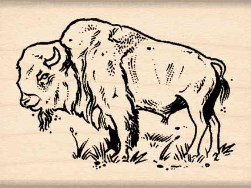 Bison Rubber Stamp - 1-1/2 inches x 2 inches