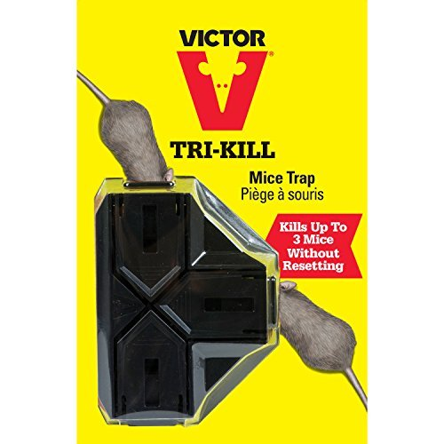Victor Tri Kill Mouse Trap