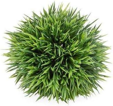 """Torre & Tagus Spike Grass Ball 5"""""""