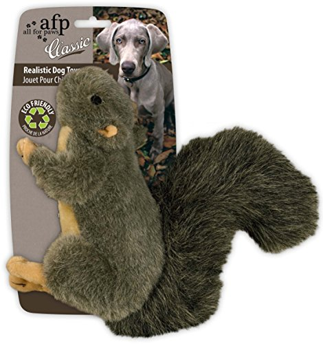 (All for Paws Classic Squirrel Pet Toys, Small)