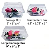 """Boutonniere Flower Box Clear Prom Wedding Corsage Craft Container w/ eBook (8"""" x 5"""" x 4"""", 25 Count)"""
