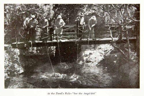 1947 Print Devils Hole Bermuda Angel Fish Fishermen Footbridge Fishing Tropical - Original Halftone Print
