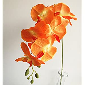 jiumengya 5pcs Orange Color Moth Orchids Phalaenopsis Orchid Orchid 8 Heads/Piece for Wedding Decorative Artificial Flowers 16