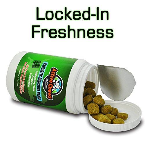 Active Chews Premium Probiotics Probiotics