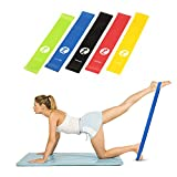 Toplus Exercise Resistance Bands for Daily Workout, Pilates, Yoga, Rehab, Physical Therapy, Set of 5 with Instructional Booklet and Carry Bag