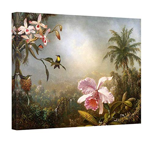 Easy Art Prints Martin Johnson Heade's 'Orchids Nesting Hummingbirds and a Butterfly' Premium Canvas Art 26 x 20 ()