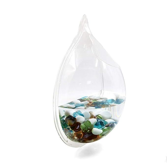 Amazon.com : ZCHXD Acrylic Drop Shaped Wall Mounted Hanging Fishbowl ...