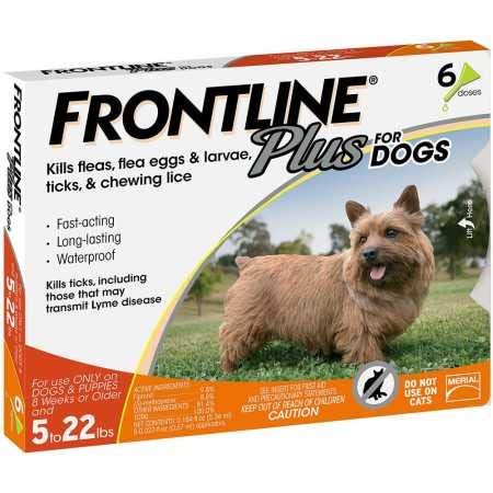 Frontline Plus for Dogs Small Dog (5-22 pounds) Flea and Tick Treatment, 6 Doses by Frontline