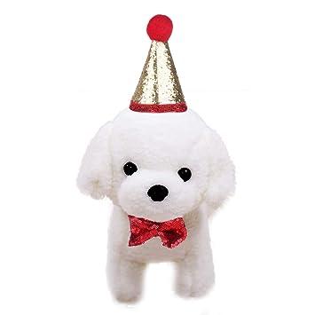 CHICTRY Gorro de cumpleaños para Perro con diseño de Cono de ...