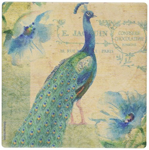 Peacock Coasters (Thirstystone Occasions Coaster, Peacock, Multicolor)
