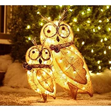 Amazon 2 indoor outdoor lighted burlap owl family great 2 indoor outdoor lighted burlap owl family great accent with other christmas figures or decor aloadofball Choice Image