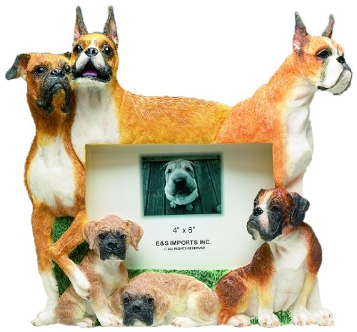 Boxer Picture Frame Holds Your Favorite 4 x 6 Inch Photo, A Hand Painted Realistic Looking Boxer  Family Surrounding  Your Photo. This Beautifully Crafted Frame is A Unique Accent To Any Home or Office. The Boxer Picture Frame Is The Perfect Gift For Boxer Owners And Lovers! Dog Breed Photo Picture Frame