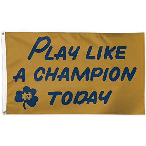 WinCraft NCAA Notre Dame 02283115 Deluxe Flag, 3' x 5'