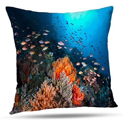 (Deronge Sea Life Decorative Pillow Covers, Throw Pillow Case North Indonesia Small Colorful Fish Swim Coral Reef Fish Throw Pillow Covers 18