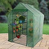 Bond 63537 Greenhouse Large