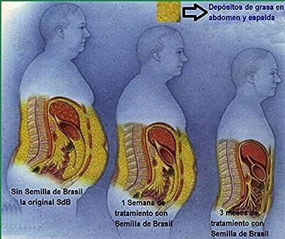 Semilla de Brasil Seed Original Brazilian Natural Weight Loss