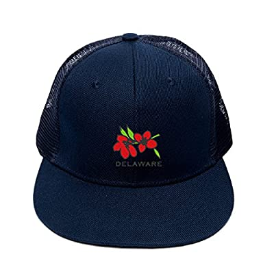 Fashion Hip Hop Embroidery Delaware State Flower Peace Breathable Snapbacks Hat