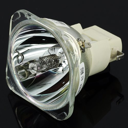 Lâmpada para Projetor Infocus SP-LAMP-049 Compatível Bulbo