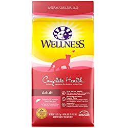 Wellness Complete Health Natural Dry Cat Food, Salmon & Salmon Meal Recipe, 2.5-Pound Bag