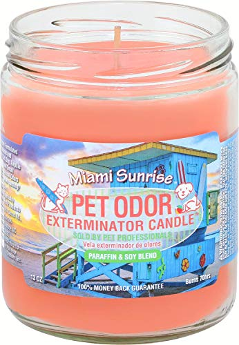 Pet Odor Exterminator Miami Sunrise Candle, 13 oz ()