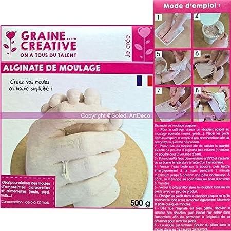 Alginate poudre 5 x 500 g Sachets Pour Moulage