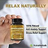 Ashwagandha Supplement Made with Organic Ashwaganda