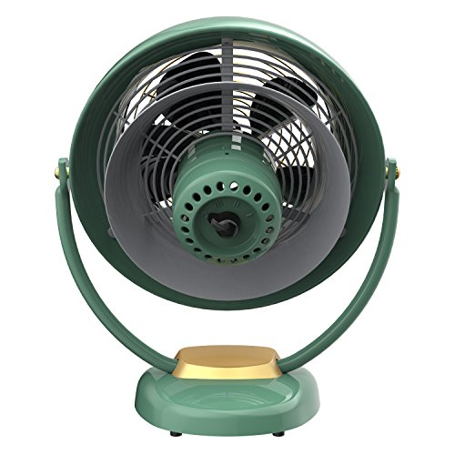 Vornado VFAN Sr. Air Fan, Green