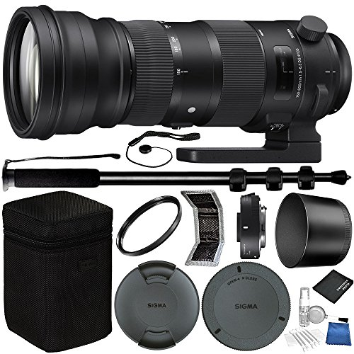 Sigma 150-600mm f/5-6.3 DG OS HSM Sports Lens and ...