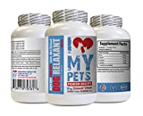 I LOVE MY PETS LLC Anxiety Relief for Dogs - Dog Relaxant - Anxiety Relief - Keep Calm Treats - Dog Calm - 90 Tablets (1 Bottle)