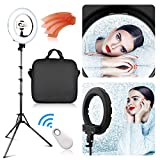 FOSITAN LED Ring Light 13.6 inch Outer/8.66inch Inner with 2 Meter Light Stand, Filters, Carrying Bag for Makeup Artist Vlogger YouTube Video and Portraits Salon Shooting