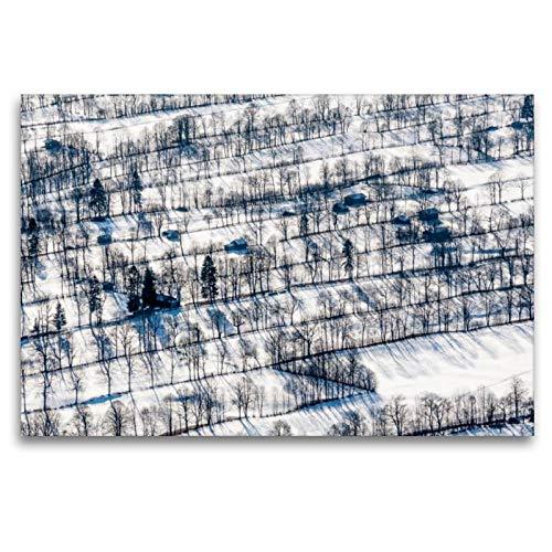 Premium Textil de lienzo 45cm x 30cm Algodón Horizontal filas en invierno, 120 x 80 cm por Hans Seidl