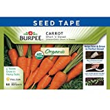 Burpee 60339 Certified Organic Seed Tape Carrot Short 'N Sweet 22.5 Ft 370 Seeds