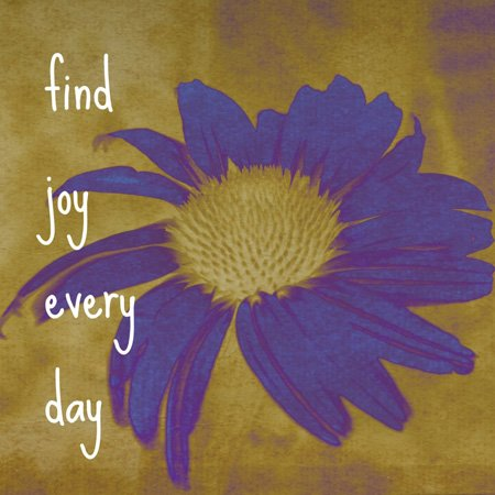 3dRose LLC lsp_41170_6 Purple Flower Find Joy Every Day Inspirational Quotes Art 2 Plug Outlet Cover by 3dRose (Image #2)
