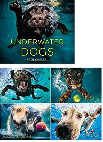 Underwater Dogs Pack Includes - Splash 1000 Piece Dog Jigsaw Puzzle and Hardcover Book
