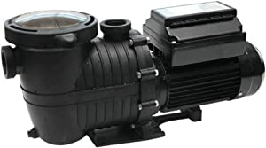 Rx Clear Mighty Niagara 1.5 HP Variable Speed I/G Pump for Inground Swimming Pool | 230V | High Efficiency, Quiet Operation, and Longevity