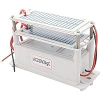 Festnight Generador de ozono de cerámica portátil 220V