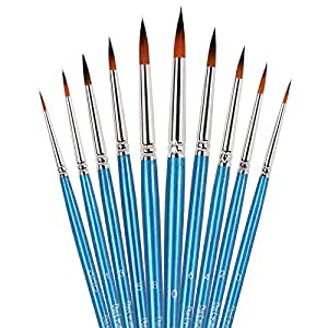 Amazon.com: Round Pointed Tip Paint Brushes Set -10 Piece