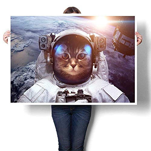 Astronaut cat in Outer Space Against The Backdrop of The Planet Earth Elements of This Image furnishedpaintingsart16