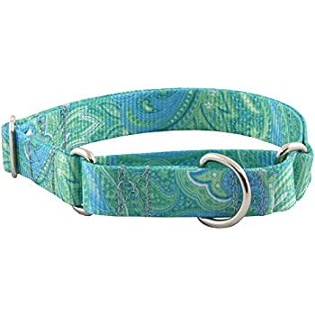 country brook design green paisley martingale dog collarl