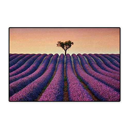 Sunset Pinecones - Tree,Door Mats,Lavender Flowers Blooming Field and A Tree Uphill on Sunset Valensole France Print,Customize Bath Mat with Non Slip Backing,Purple Peach 24