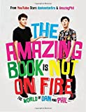 img - for The Amazing Book Is Not on Fire: The World of Dan and Phil book / textbook / text book