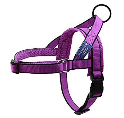 BIG SMILE PAW Dog Harness for Walking and Training,Dog Harness Adjustable,Padded Neck and Back Strap(Purple)