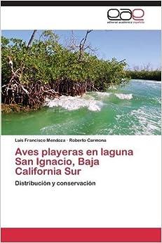 Aves playeras en laguna San Ignacio, Baja California Sur
