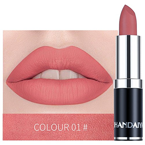 Matte Moisturizing Lasting Lipstick,Fheaven Matte Lipstick Lips Makeup Cosmetics Waterproof Pintalabios Batom Mate Lip Gloss (A)