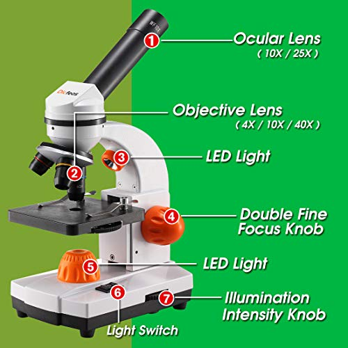 Dicfeos Microscope for Kids and Student, 40X-100X-250X-400X-1000X Magnification, Optics Glass Lens, Dual-Light Illumination, Extra 25X Ocular Lens and Microscope Accessories