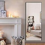 "self Full Length Floor Mirror 65""x22"" Large"