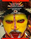 img - for Cultural Anthropology: A Contemporary Perspective (Third Edition) book / textbook / text book