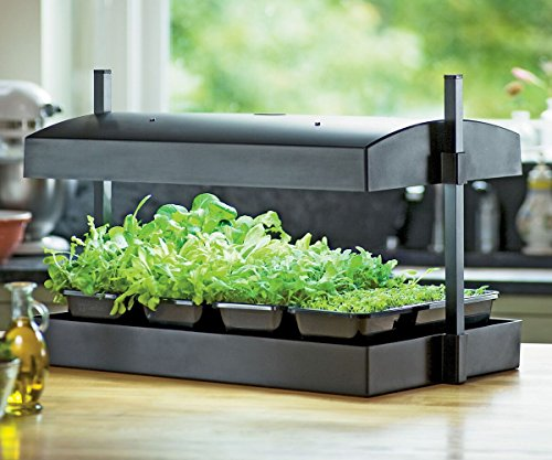 Grow Light Garden And Tray in US - 8
